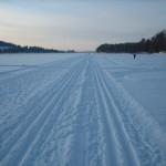Go skiing in Rovaniemi
